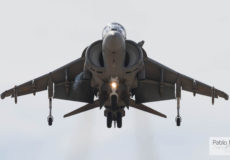 Harrier frontal