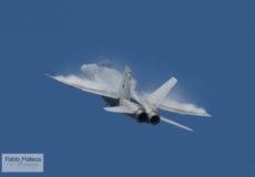 McDonnell Douglas F-18 Hornet del Ala 12